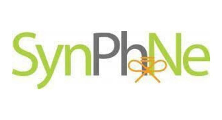 synphne