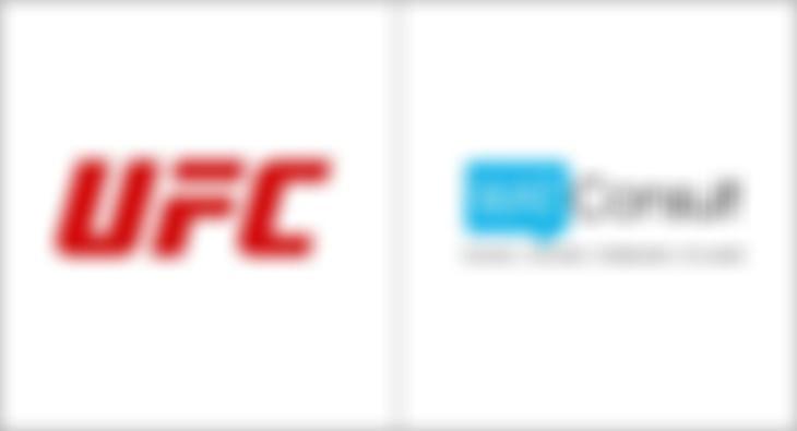 Wat Consult UFC