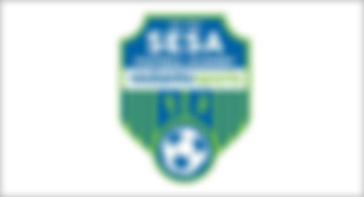 SFA New Logo