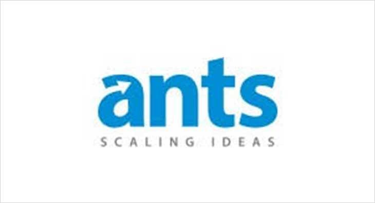 ants digital?blur=25