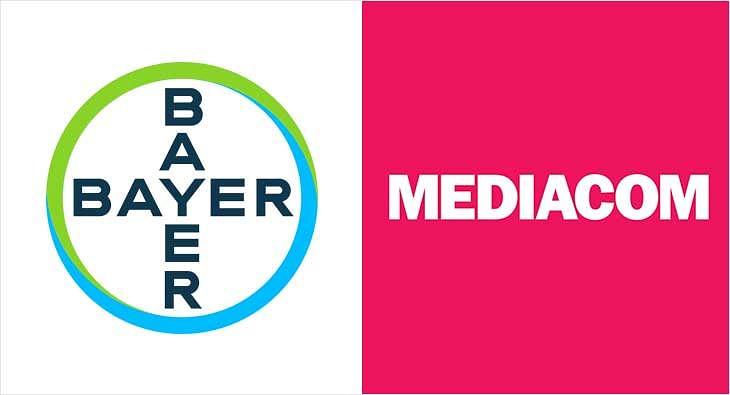 bayer?blur=25