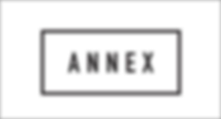 TheAnnex