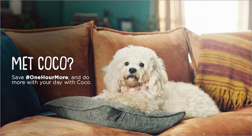 Coco?blur=25